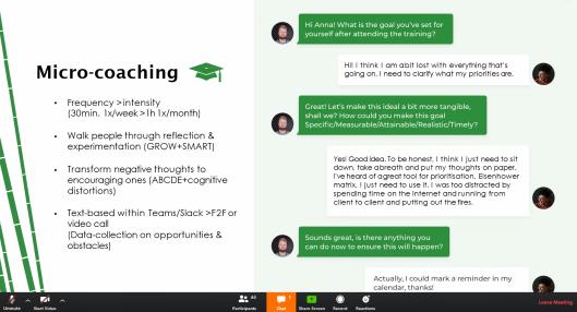 micro coaching
